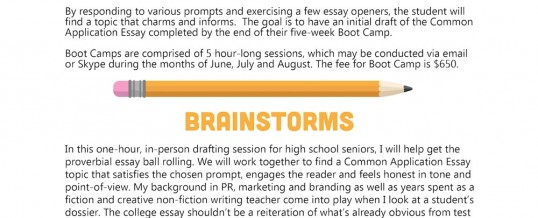 Summer Boot Camps & Brainstorms